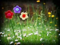 fleurs en feutre.jpg